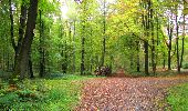 Randonnée Marche LONGPONT - en forêt de Retz_49_Longpont_ étangs de Javage_AR - Photo 127