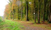 Randonnée Marche LONGPONT - en forêt de Retz_49_Longpont_ étangs de Javage_AR - Photo 130