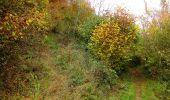 Randonnée Marche LONGPONT - en forêt de Retz_49_Longpont_ étangs de Javage_AR - Photo 48