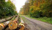 Randonnée Marche LONGPONT - en forêt de Retz_49_Longpont_ étangs de Javage_AR - Photo 72