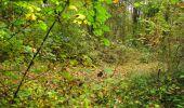 Randonnée Marche LONGPONT - en forêt de Retz_49_Longpont_ étangs de Javage_AR - Photo 118