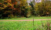 Randonnée Marche LONGPONT - en forêt de Retz_49_Longpont_ étangs de Javage_AR - Photo 57