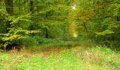 Randonnée Marche LONGPONT - en forêt de Retz_49_Longpont_ étangs de Javage_AR - Photo 74