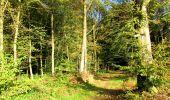 Randonnée Marche LONGPONT - en forêt de Retz_49_Longpont_ étangs de Javage_AR - Photo 24