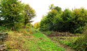 Randonnée Marche LONGPONT - en forêt de Retz_49_Longpont_ étangs de Javage_AR - Photo 79