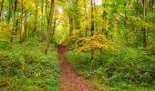 Randonnée Marche LONGPONT - en forêt de Retz_49_Longpont_ étangs de Javage_AR - Photo 40