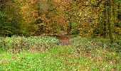 Randonnée Marche LONGPONT - en forêt de Retz_49_Longpont_ étangs de Javage_AR - Photo 59