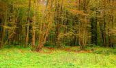 Randonnée Marche LONGPONT - en forêt de Retz_49_Longpont_ étangs de Javage_AR - Photo 28