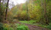 Randonnée Marche LONGPONT - en forêt de Retz_49_Longpont_ étangs de Javage_AR - Photo 116