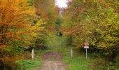 Randonnée Marche LONGPONT - en forêt de Retz_49_Longpont_ étangs de Javage_AR - Photo 56