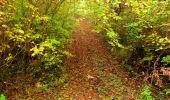 Randonnée Marche LONGPONT - en forêt de Retz_49_Longpont_ étangs de Javage_AR - Photo 46