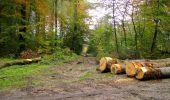 Randonnée Marche LONGPONT - en forêt de Retz_49_Longpont_ étangs de Javage_AR - Photo 75
