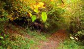 Randonnée Marche LONGPONT - en forêt de Retz_49_Longpont_ étangs de Javage_AR - Photo 45