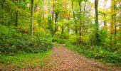 Randonnée Marche LONGPONT - en forêt de Retz_49_Longpont_ étangs de Javage_AR - Photo 41