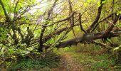 Randonnée Marche LONGPONT - en forêt de Retz_49_Longpont_ étangs de Javage_AR - Photo 99