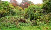 Randonnée Marche LONGPONT - en forêt de Retz_49_Longpont_ étangs de Javage_AR - Photo 103