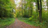 Randonnée Marche LONGPONT - en forêt de Retz_49_Longpont_ étangs de Javage_AR - Photo 126
