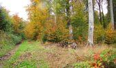Randonnée Marche LONGPONT - en forêt de Retz_49_Longpont_ étangs de Javage_AR - Photo 76