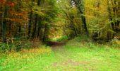 Randonnée Marche LONGPONT - en forêt de Retz_49_Longpont_ étangs de Javage_AR - Photo 61