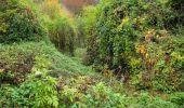 Randonnée Marche LONGPONT - en forêt de Retz_49_Longpont_ étangs de Javage_AR - Photo 105