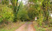 Randonnée Marche LONGPONT - en forêt de Retz_49_Longpont_ étangs de Javage_AR - Photo 90