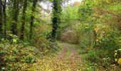 Randonnée Marche LONGPONT - en forêt de Retz_49_Longpont_ étangs de Javage_AR - Photo 120