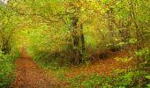 Randonnée Marche LONGPONT - en forêt de Retz_49_Longpont_ étangs de Javage_AR - Photo 44