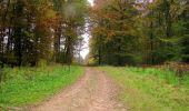 Randonnée Marche LONGPONT - en forêt de Retz_49_Longpont_ étangs de Javage_AR - Photo 60