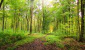 Randonnée Marche LONGPONT - en forêt de Retz_49_Longpont_ étangs de Javage_AR - Photo 31
