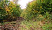 Randonnée Marche LONGPONT - en forêt de Retz_49_Longpont_ étangs de Javage_AR - Photo 77