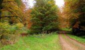 Randonnée Marche LONGPONT - en forêt de Retz_49_Longpont_ étangs de Javage_AR - Photo 58