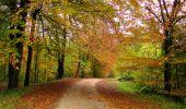 Randonnée Marche LONGPONT - en forêt de Retz_49_Longpont_ étangs de Javage_AR - Photo 54