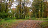 Randonnée Marche LONGPONT - en forêt de Retz_49_Longpont_ étangs de Javage_AR - Photo 132