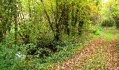 Randonnée Marche LONGPONT - en forêt de Retz_49_Longpont_ étangs de Javage_AR - Photo 113