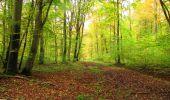Randonnée Marche LONGPONT - en forêt de Retz_49_Longpont_ étangs de Javage_AR - Photo 30