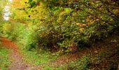 Randonnée Marche LONGPONT - en forêt de Retz_49_Longpont_ étangs de Javage_AR - Photo 47