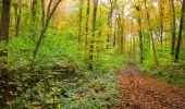 Randonnée Marche LONGPONT - en forêt de Retz_49_Longpont_ étangs de Javage_AR - Photo 39