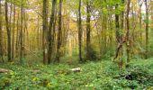 Randonnée Marche LONGPONT - en forêt de Retz_49_Longpont_ étangs de Javage_AR - Photo 122