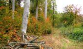Randonnée Marche LONGPONT - en forêt de Retz_49_Longpont_ étangs de Javage_AR - Photo 78