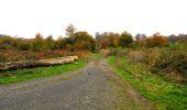 Randonnée Marche LONGPONT - en forêt de Retz_49_Longpont_ étangs de Javage_AR - Photo 84