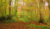 Randonnée Marche LONGPONT - en forêt de Retz_49_Longpont_ étangs de Javage_AR - Photo 17