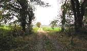 Randonnée Marche LONGPONT - en forêt de Retz_49_Longpont_ étangs de Javage_AR - Photo 92