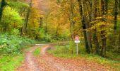 Randonnée Marche LONGPONT - en forêt de Retz_49_Longpont_ étangs de Javage_AR - Photo 135