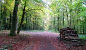 Randonnée Marche LONGPONT - en forêt de Retz_49_Longpont_ étangs de Javage_AR - Photo 124
