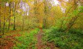 Randonnée Marche LONGPONT - en forêt de Retz_49_Longpont_ étangs de Javage_AR - Photo 19