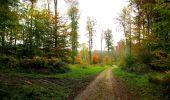 Randonnée Marche LONGPONT - en forêt de Retz_49_Longpont_ étangs de Javage_AR - Photo 66