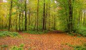 Randonnée Marche LONGPONT - en forêt de Retz_49_Longpont_ étangs de Javage_AR - Photo 33