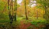 Randonnée Marche LONGPONT - en forêt de Retz_49_Longpont_ étangs de Javage_AR - Photo 18