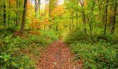Randonnée Marche LONGPONT - en forêt de Retz_49_Longpont_ étangs de Javage_AR - Photo 34