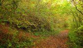 Randonnée Marche LONGPONT - en forêt de Retz_49_Longpont_ étangs de Javage_AR - Photo 42